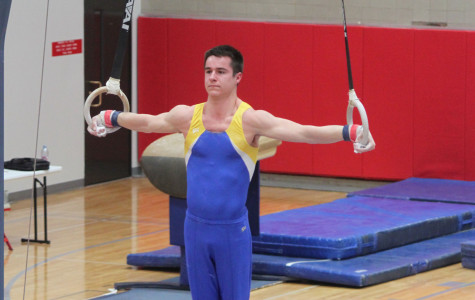 Boys gymnastics strives for state