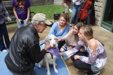 Comfort dog helps students de-stress at NC