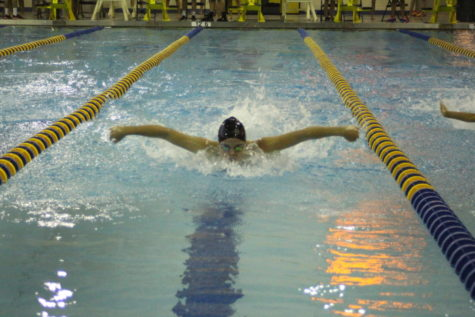 Girls' swim and dive team's climbs toward state