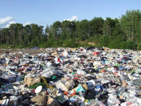 Farm to landfill