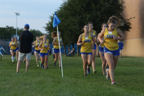 Girls XC prepares for state meet