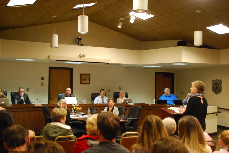 Julie Bryar-Smith addresses the village board (Williams/LION).