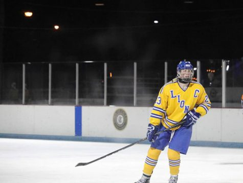 Hockey team perseveres through tough year