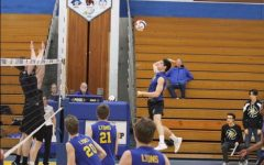 Boys volleyball stays active