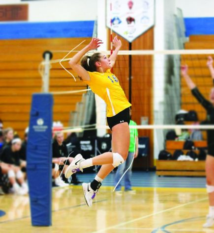Patti Cesarini jumping to hit the volleyball during a game (edits made by Liz Gremer).