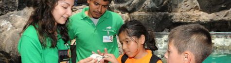 King Conservation Science Scholars showing fossils at Brookfield Zoo Picture from the Brookfield Zoo Website