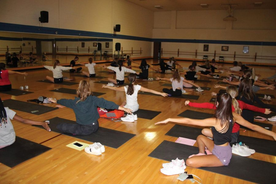 Students at the Yoga and Wellness club in NC dance gym (Gee/LION).